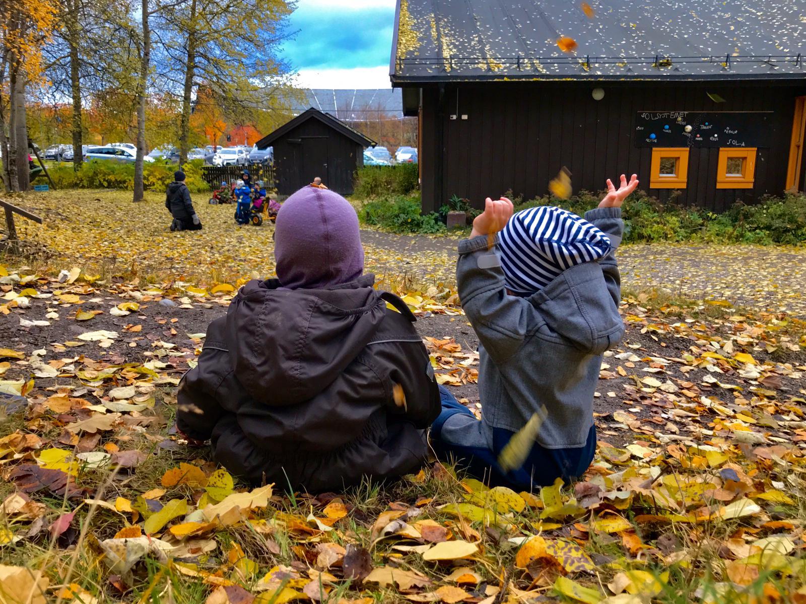 Ønsker du plass i Fjæraskogen?